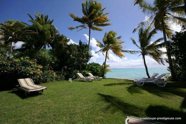 La villa du lagon guadeloupe de luxe au bord du lagon de saint fran ois - Petit jardin de luxe montreuil ...